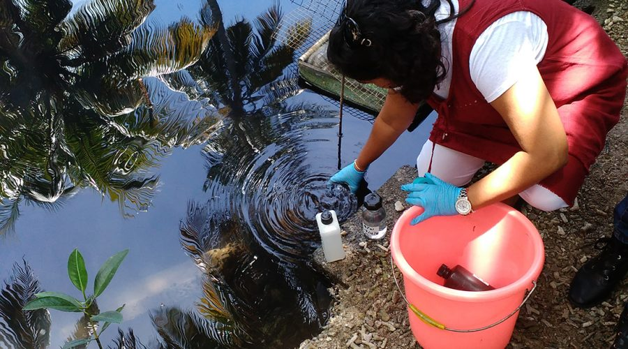 mauritius-water-samples-1140x640.jpg