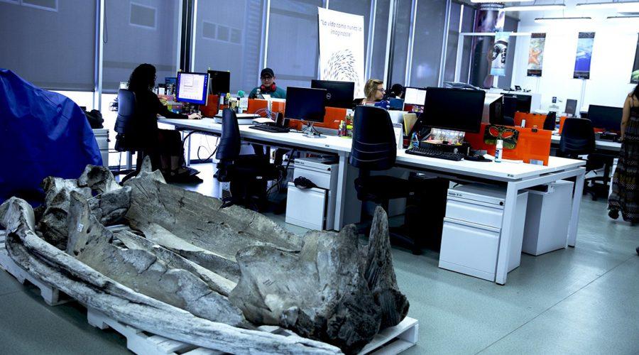 marine-scientists-1140x640.jpg